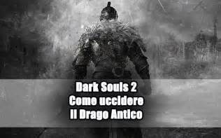 dark souls 2 drago antico